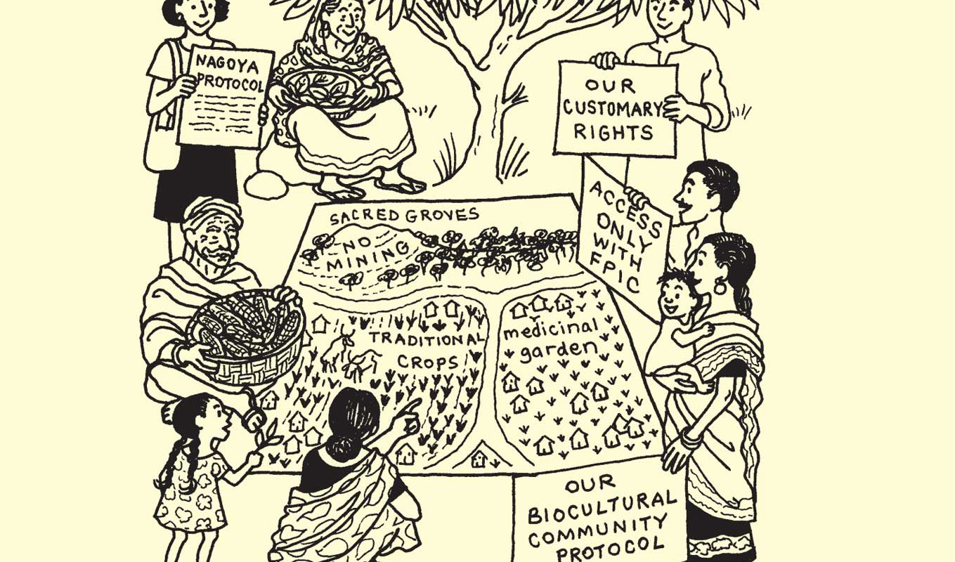 Biodiversity and Culture: Exploring Community Protocols, Rights and Consent