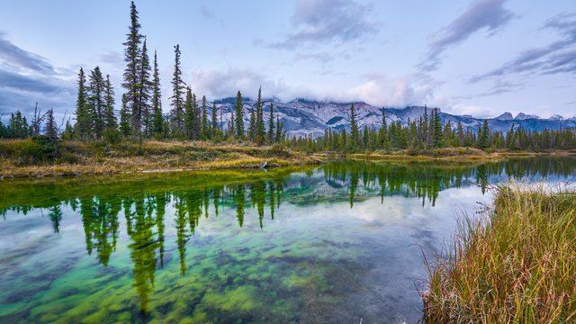 The Paths to Realizing Reconciliation: Indigenous Consultation in Jasper National Park